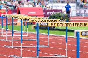 Picture of Track Hurdle