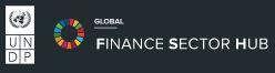 UNDP Finance Sector Hub